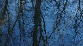 Un cielo azul con los árboles reflejados en corriente almacen de metraje de vídeo