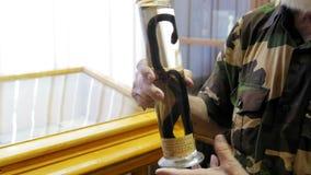 Un científico muestra la muestra de serpiente en el tubo de ensayo: víbora del prado - ursinii del Vipera, cierre para arriba almacen de video