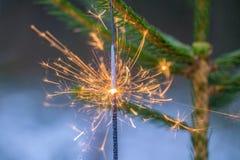 Un cierge magique avec la lumière orange et jaune placée sur un arbre impeccable vert photos stock