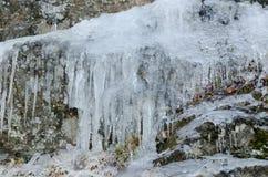 Un cierto colgante icicless abajo del acantilado Imagen de archivo