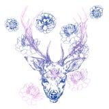 Un ciervo joven con los cuernos córneos en los cuales se plantan las peonías Ilustración Diseñe un tatuaje, un símbolo de la magi ilustración del vector