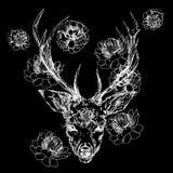 Un ciervo joven con los cuernos córneos en los cuales se plantan las peonías Ilustración Diseñe un tatuaje, un símbolo de la magi libre illustration