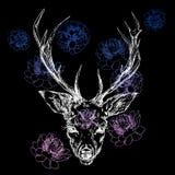 Un ciervo joven con los cuernos córneos en los cuales se plantan las peonías Ilustración Diseñe un tatuaje, un símbolo de la magi stock de ilustración