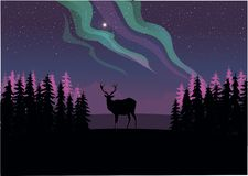 Un ciervo solitario que mira fijamente la aurora boreal stock de ilustración