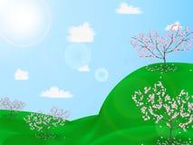 Un ciliegio di fioritura sulle colline verdi Fotografie Stock