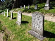 Un cimetière d'animal familier Images libres de droits