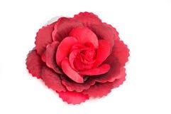 Un clip de cheveu de fleur pour des femmes. Images stock