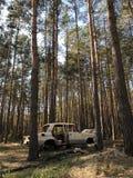 Un coche abandonado en el medio del bosque Fotos de archivo