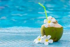 un coco con la paja y el frangipani de las flores blancas fotografía de archivo