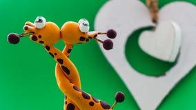 Un coeur blanc pour deux girafes Photo stock