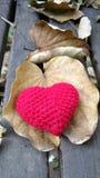 Un coeur en baisse de rouge de congé et d'ine Images stock