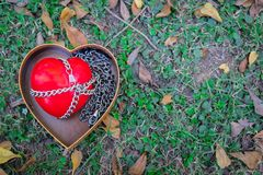 Un coeur rouge attaché avec des chaînes sur des histoires d'amour de concept de livre blanc, Valentine Concept Photo stock