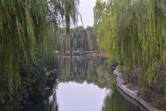 Un coin du parc botanique Photo libre de droits