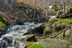 Un coin sauvage de montagne de Vitosha, Bulgarie photo stock