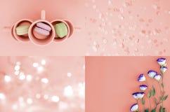 Un collage de fotos en el color que vive en 2019 el coral fotos de archivo libres de regalías