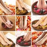 Un collage de pies femeninos, de pétalos color de rosa y de tazones de fuente Imagen de archivo libre de regalías