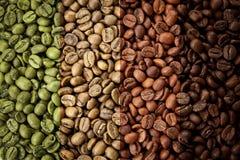 Un collage dei chicchi di caffè che mostrano le varie fasi della torrefazione da diretto crudo all'arrosto italiano fotografia stock