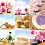 Un collage della stazione termale di molte immagini con i fiori Fotografie Stock Libere da Diritti