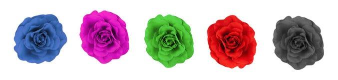 Un collage di cinque rose del tessuto Fotografia Stock Libera da Diritti