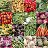Un collage di 16 ortaggi freschi Immagini Stock Libere da Diritti