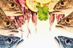 Un collage numérique abstrait d'art, espèce marine Photo stock