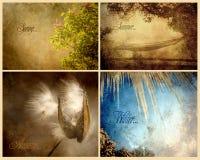 Un collage strutturato di quattro stagioni. Fotografie Stock