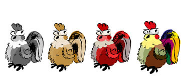 Un colore di quattro polli Fotografie Stock