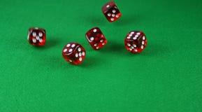 Un colpo di azione di 5 dadi gettati sulla tabella Fotografie Stock Libere da Diritti