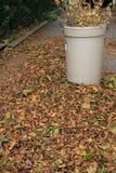 Un compartimiento del otoño ramifica y se va durante limpieza fotos de archivo