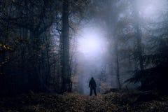 Un concept mystérieux éditer Une figure solitaire se tenant sur un chemin forestier une nuit brumeuse fantasmagorique regardant d photo libre de droits