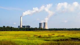 Un concepto de energía verde renovable: una margarita y una hierba sobre el símbolo de la energía atómica quebrada Foto de archivo