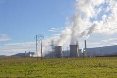 Un concepto de energía verde renovable: una margarita y una hierba sobre el símbolo de la energía atómica quebrada Imágenes de archivo libres de regalías
