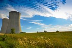 Un concetto di energia verde rinnovabile: una margherita e un'erba sopra il simbolo di energia nucleare rotta Fotografie Stock