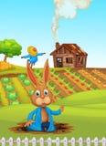 Un coniglio all'azienda agricola illustrazione di stock