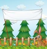 Un coniglio vicino al recinto di legno sotto l'insegna vuota Immagine Stock Libera da Diritti