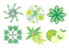 Un conjunto de árboles y de plantas isométricos ilustración del vector