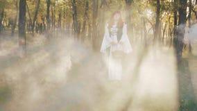 Un conte de fées gelé, une belle beauté irlandaise seul se tient dans la forêt avec un panier dans des ses mains, rayons de Solei clips vidéos