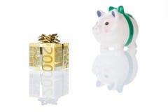 Un contenitore di regalo dei soldi dell'euro 200 con la banca piggy Fotografia Stock Libera da Diritti