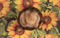 Un contexte nouveau-né de Digital sur une surface florale image stock