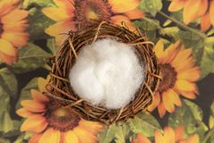 Un contexte nouveau-né de Digital sur une surface florale photo libre de droits