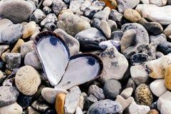 Un corazón de cáscaras en una playa de piedras fotografía de archivo
