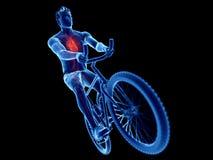 un corazón de los ciclistas ilustración del vector