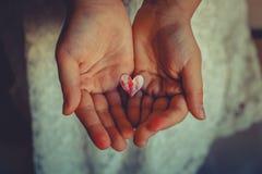 Un corazón rojo en manos Foto de archivo