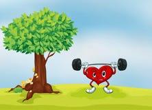 Un corazón y un árbol Fotografía de archivo libre de regalías
