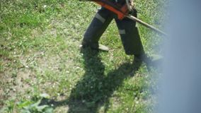 Un cortacésped de siega de la hierba del hombre almacen de metraje de vídeo