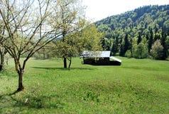 Un cottage su un prato della montagna Fotografie Stock