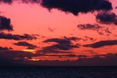 Un coucher du soleil rose Images libres de droits