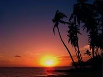 Un coucher du soleil tropical Image stock