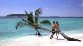 Un couple affectueux appréciant des vacances sur une plage tropicale clips vidéos