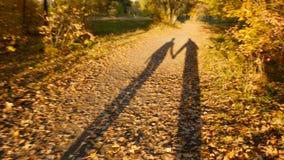 Un couple affectueux de deux ombres marche par le mouvement lent de forêt d'automne banque de vidéos